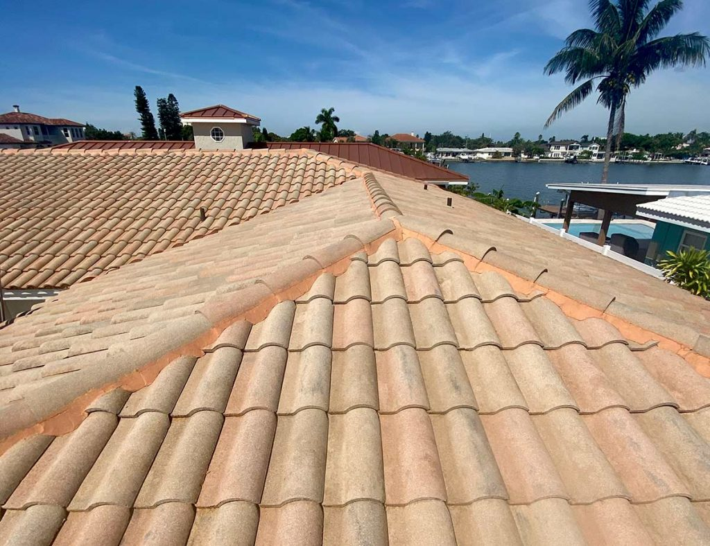After No Pressure Safe Roof Cleaning