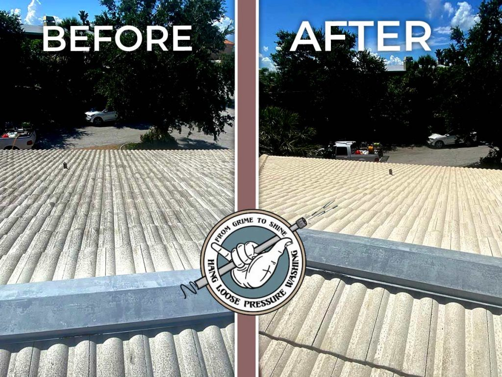 Before and After Tile Roof Cleaning