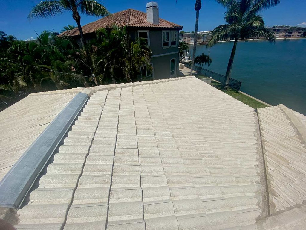 After Tile Roof Cleaning