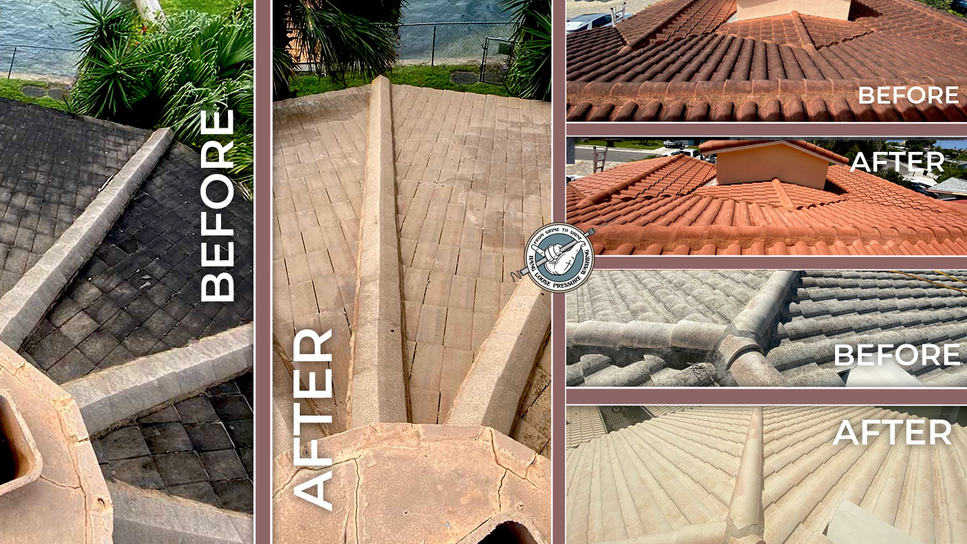 Roof Cleaning Before and After Images