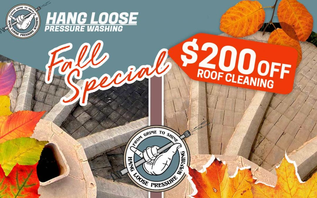 Fall roof cleaning special offer flyer