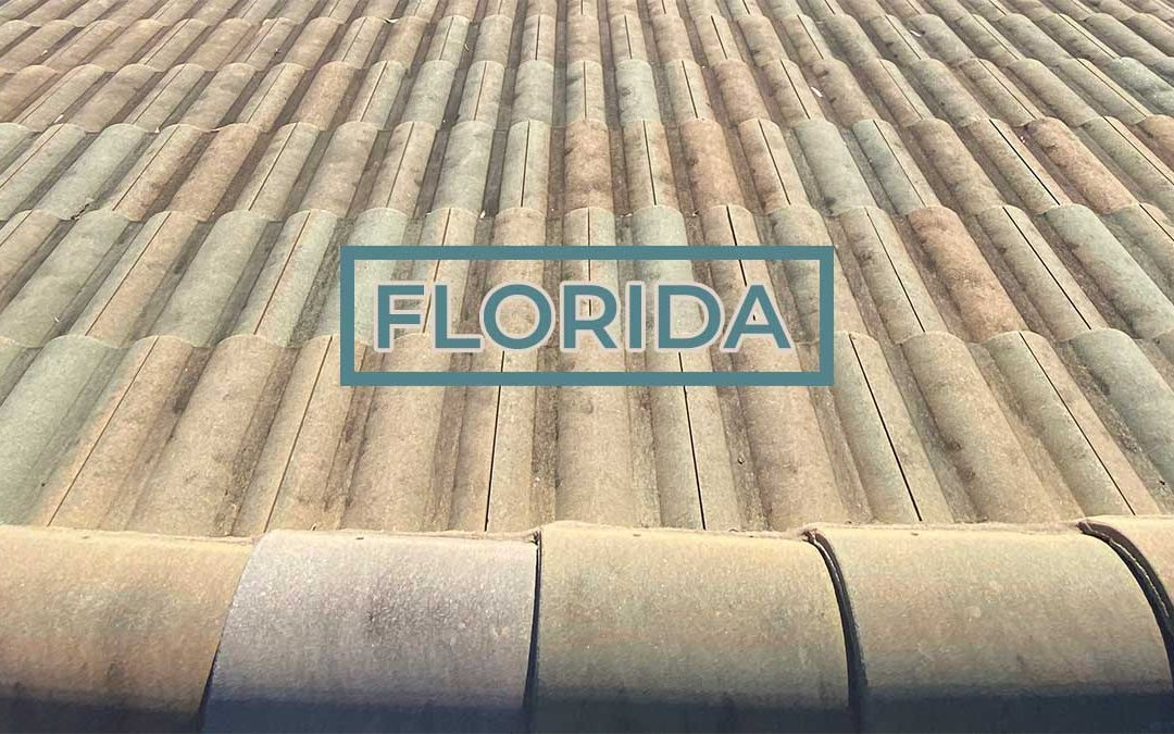 Roofs in Florida: The Grime, The Bad, and The Ugly