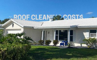 How Much Does Roof Cleaning Cost?